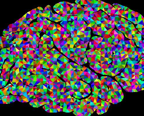 Neurowissenschaften